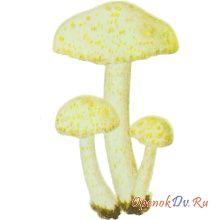 Гигрофорус золотистозубчатый