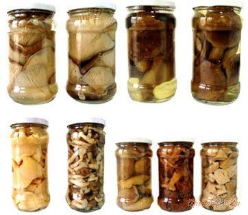 Солить грибы можно по сортам